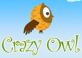 Crazy Owl Flyer Game