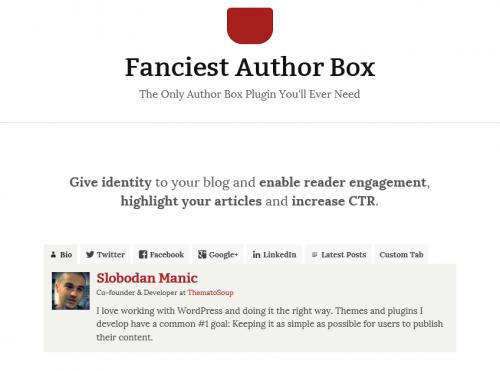 01 Fanciest Author Box