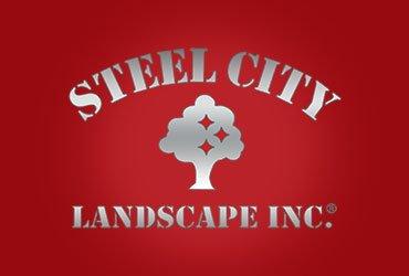 Steel City Landscape